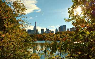 new-york-1046218